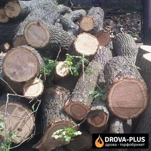 Дрова метрові Луцьк Купити рубані дрова у Drova-plus