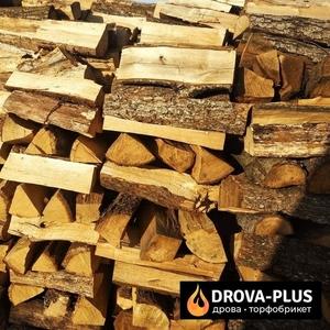 Дрова Луцьк купити дрова оптом Луцьк і область
