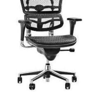 Эргономичное кресло ERGOHUMAN V2-H24 Net Black