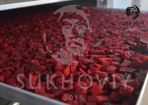 """Инфракрасный сушильный шкаф """"Sukhoviy Next"""" 4"""